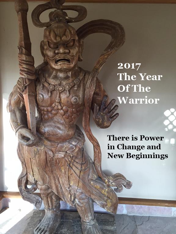 protectionwarrior2017