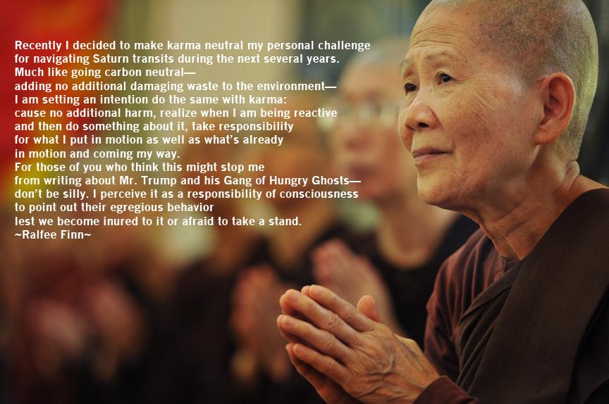 buddhistnunRalfeeQuote