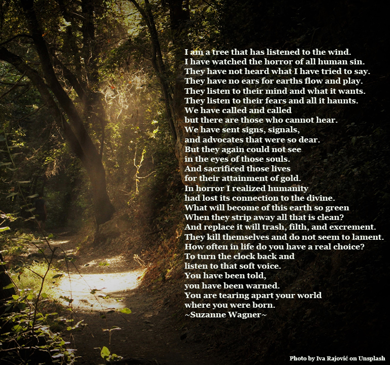paththroughtheforestquote