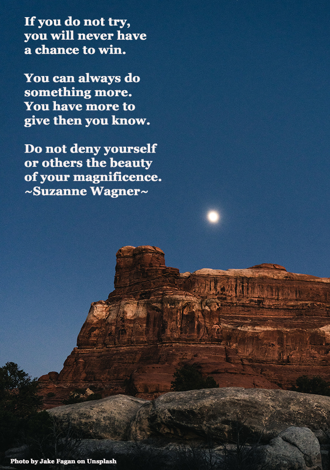 moonlightoverthedesertplateauquotesw