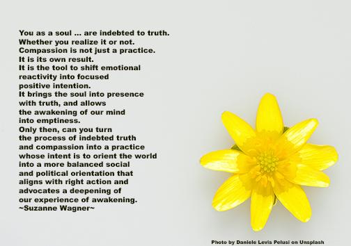 yellowflowerquotesw