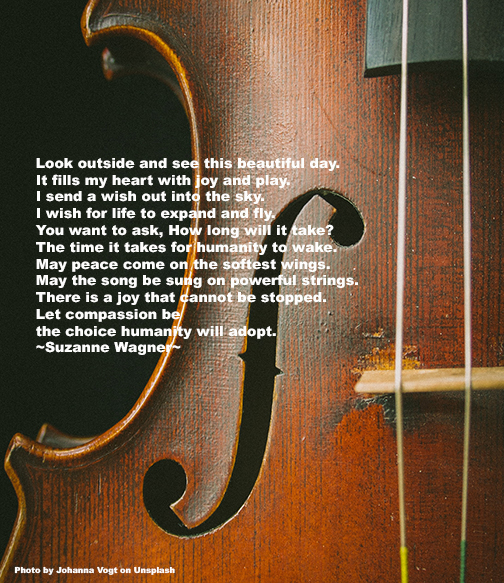 Violinquotesw